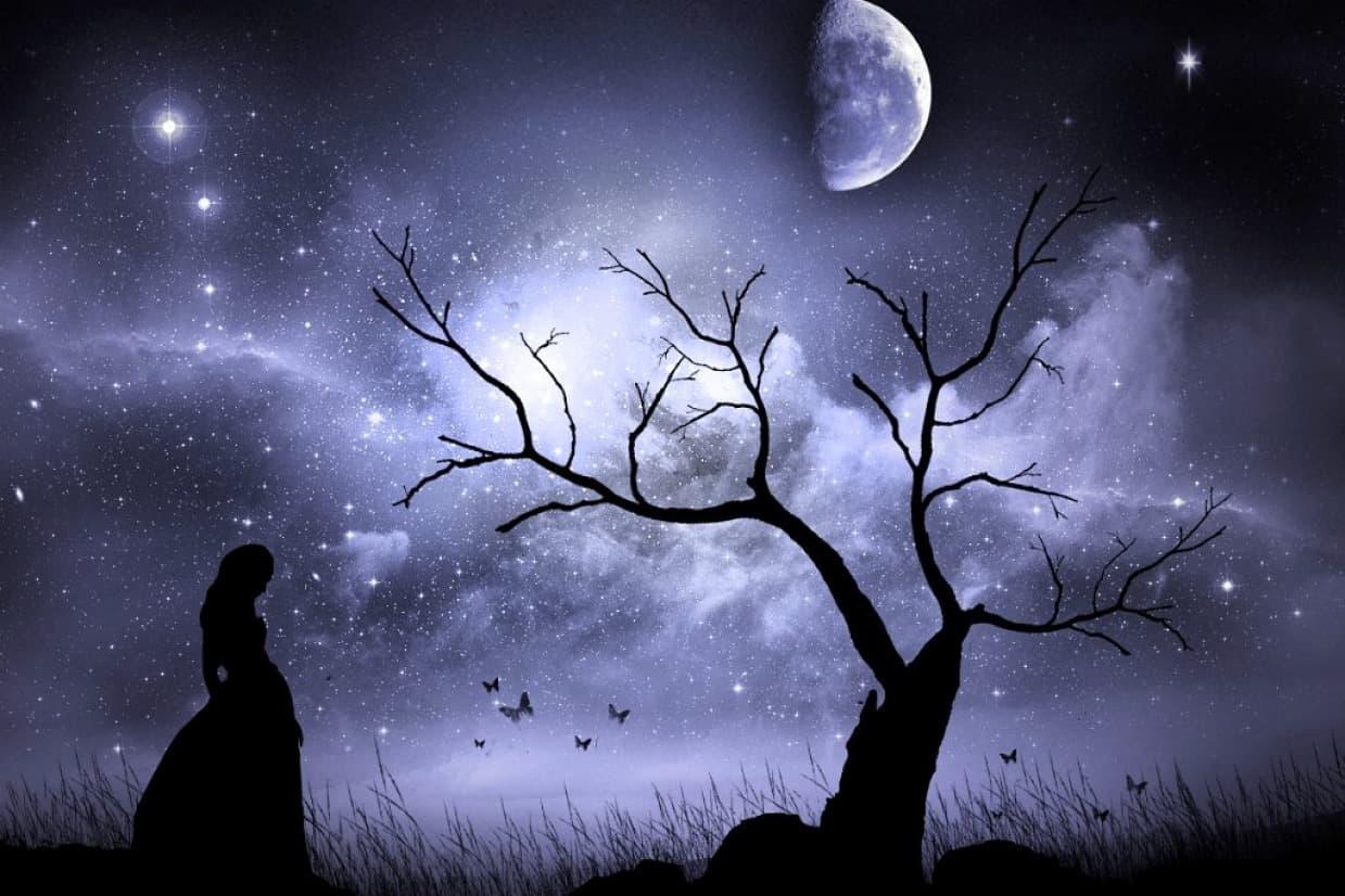 signora della notte