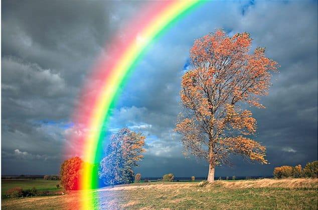 sfumature di colori