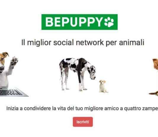 social network per animali