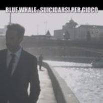 blue whale e le iene