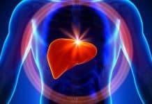 disintossicare il fegato
