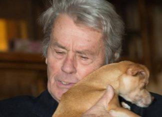 cane di Alain Delon
