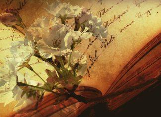 Libri di una Vita