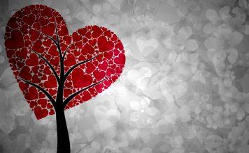 Qualcuno da amare