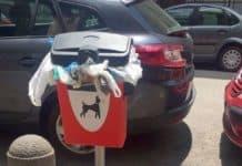 contenitori per deiezioni canine