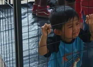 bambini immigrati in carcere