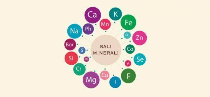 Cosa sono i sali minerali