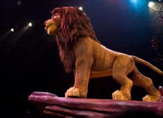 Gravi accuse per il Re Leone