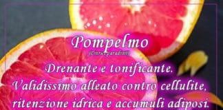 pompelmo2
