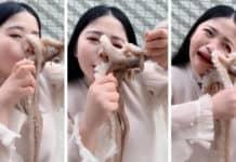 Mangiare un polpo vivo