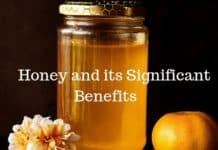 Honey and its significant Benifits