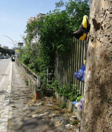 Installazioni di scarpe a Frosinone