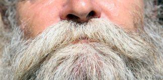 barbe bianche